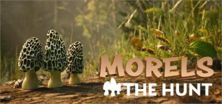 Morels: The Hunt Free Download