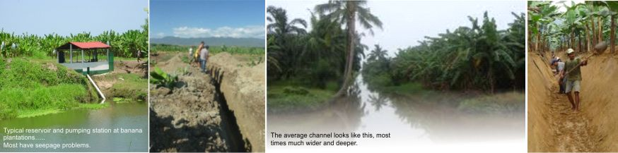 Banana Plantation soil stabilization with AggreBind