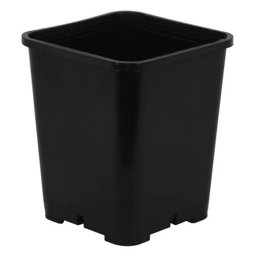 Premium Square Black Plastic Pots