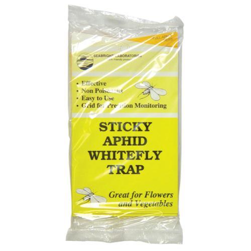Sticky Whitefly Traps
