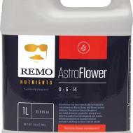 Remo AstroFlower