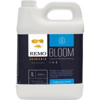 Remo Bloom