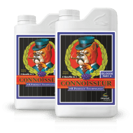 Connoisseur Bloom A & B
