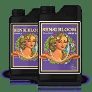 Sensi Bloom A & B