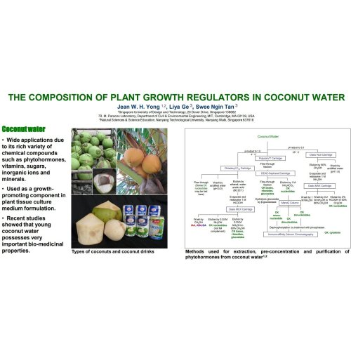 BuildASoil Horticultural Coconut Powder