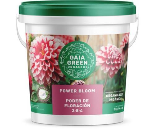 Gaia Green – Power Bloom