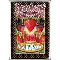 Strawberry Fields Potting Soil