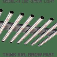 Model-H – ThinkGrow LED
