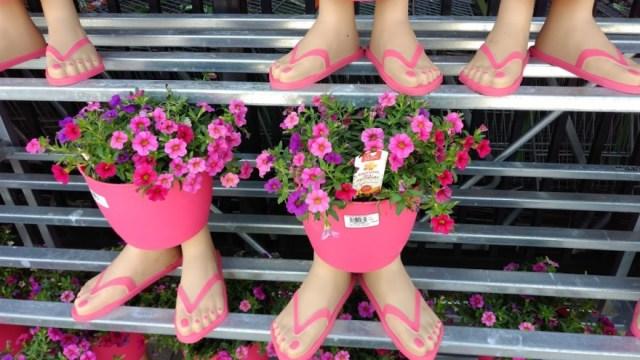 Flowerbabies Return