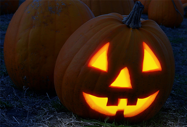 reuse or recycle your pumpkins this halloween