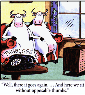 Larsen cartoon about phones not being designed for hoofed creatures