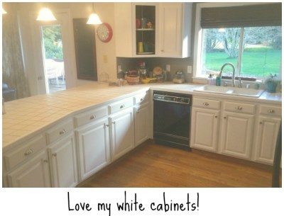 1711white cabinets wtext