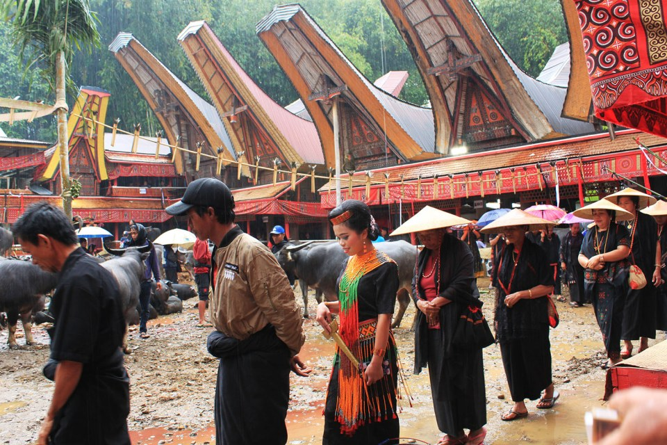 toraja ceremony dream repurpose life