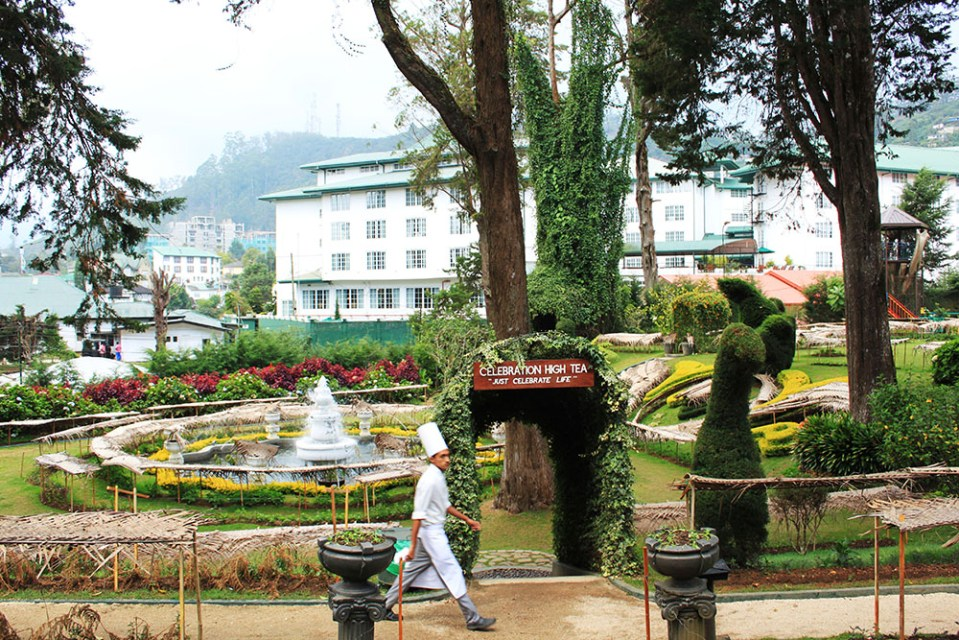 the grand hotel garden at nuwara eliya sri lanka