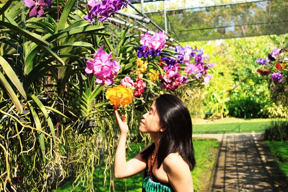 a girl smelling flowers at Bai Orchid and Butterfly Farm la vie en rose