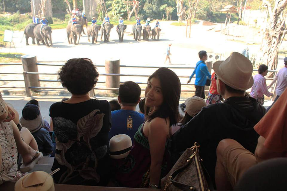asian girl traveler tourist sitting at the bench watching elephant show chiang mai thailand agirlnamedclara