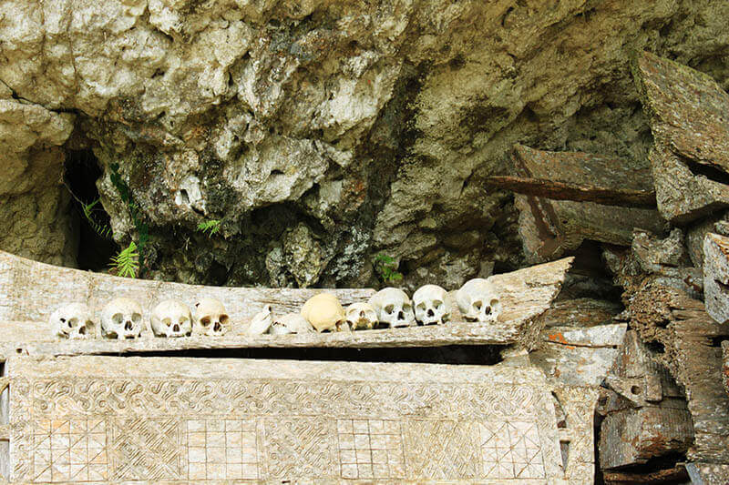 skull toraja burial cave grave sulawesi indonesia_agirlnamedclara