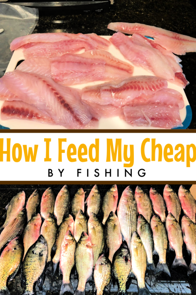 Fishing can be much more than a hobby. For families like mine, fishing for food is a way to survival. Here's how I feed my family cheap by fishing (and why you should too!)