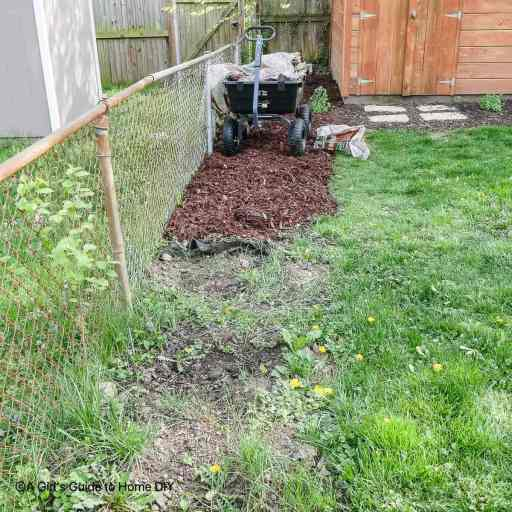 mulching the backyard