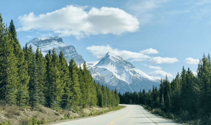 The Icefield's Parkway