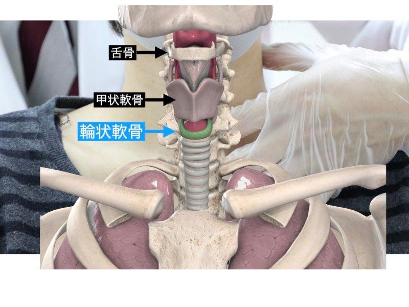 声帯(輪状軟骨)の調整