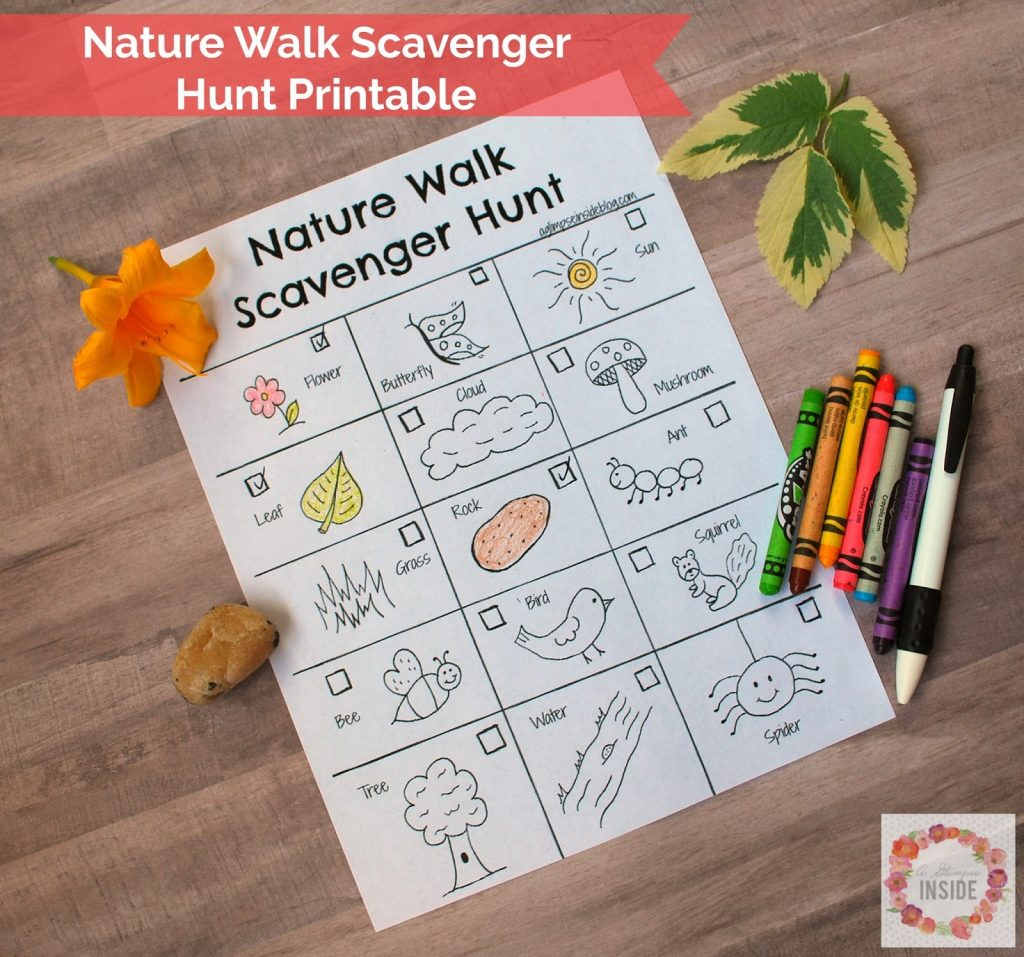 Nature Walk Scavenger Hunt Printable A Glimpse Inside