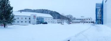 Snø gjør Aglo vakker - vinter