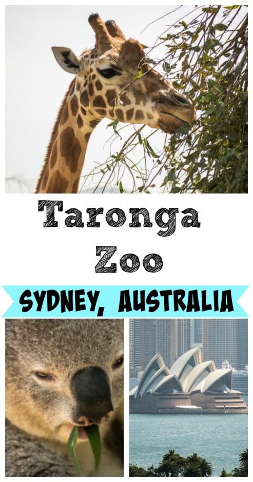 Taronga Zoo Sydney Australia