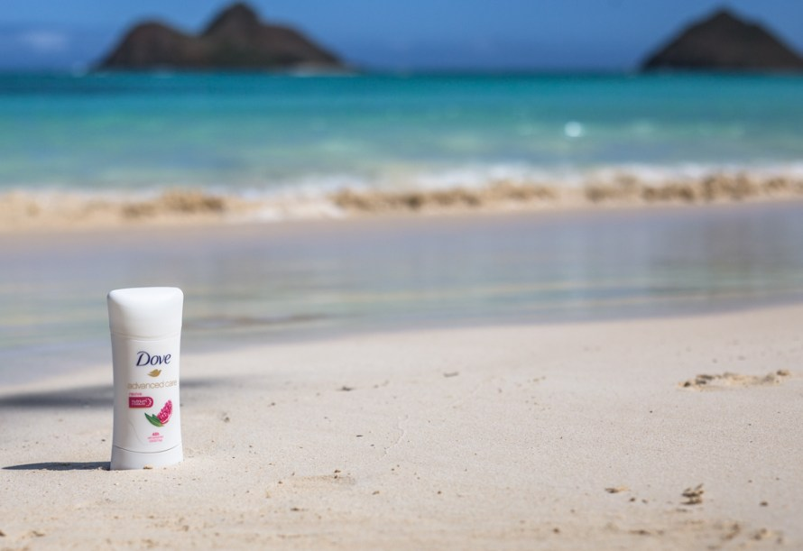 Dove Lanikai Beach Hawaii