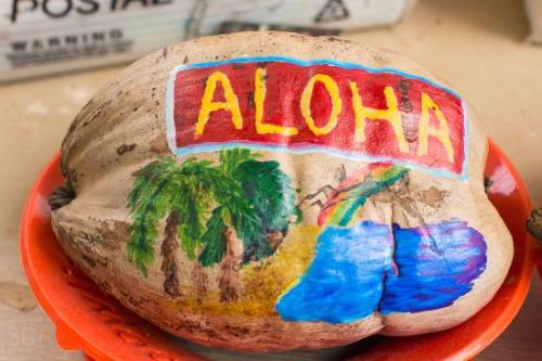 mail a coconut molokai