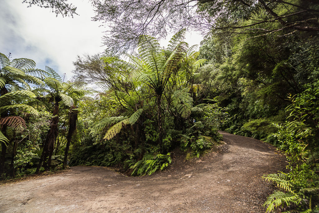 Mount Maunganui New Zealand