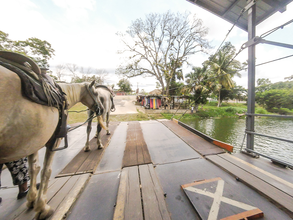 Horseback Riding to Xunantunich Ruins with Mayawalk Tours