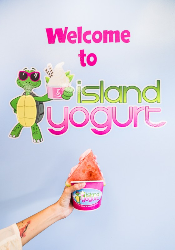 island yogurt aiea hawaii