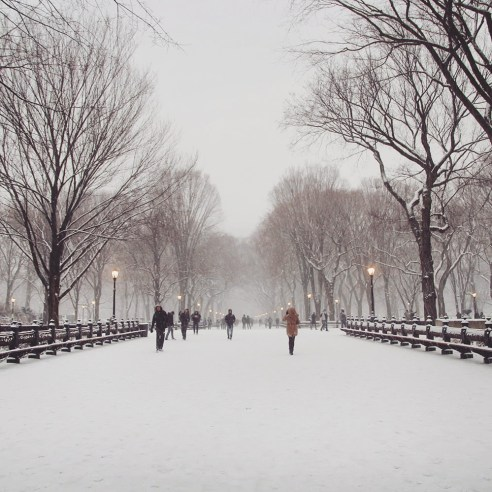Winter in Central Park, New York
