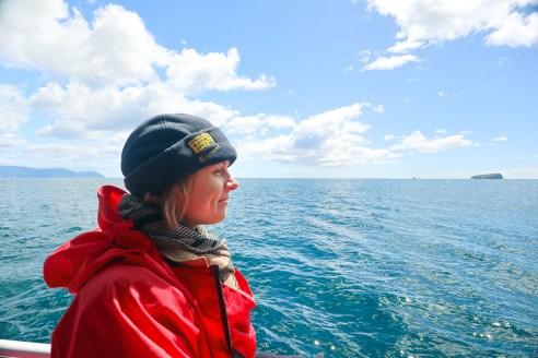 Pennicott Journeys, Tasman Island Cruise