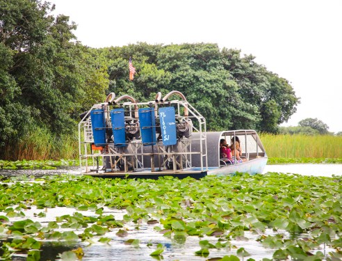 The ultimate guide to visiting Everglades National Park
