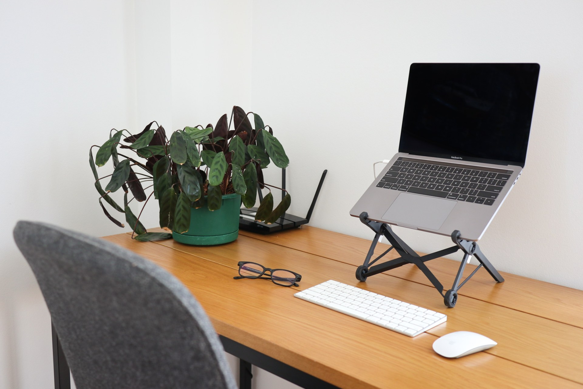 Home office setup with laptop, keyboard, mouse, and desk plant