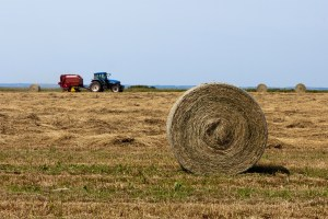 Farm tractor and hay bales
