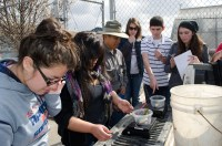 Sanger High Ag students weigh and measure the fish at the start of their aquaponics project.  Left to right: students Erin Paz, Bianca De La Cruz, advisor John Wright, instructor Audrey Bonomi, students Estevan Brown and Leila Kimbler-Cantu.