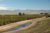 Klamath Water Allocation