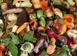 Composting pile of rotting kitchen fruits and vegetables