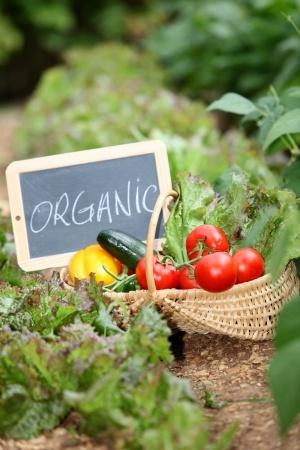 Organic Hotspots