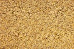 Global Grain