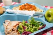 Tray of food for school meals-2
