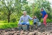 family harvesting potatoes
