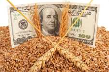 tough net farm income