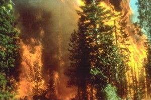 North Coast Wildfires