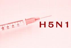 H5N1 Avian Flu Vaccine Concept