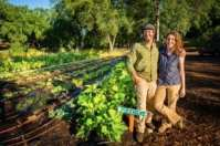 Hillview Farms is an example of one of the 1,244 small family-owned farms represented by PlacerGROWN.