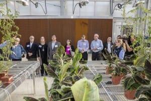 Bayer Greenhouse